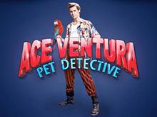 Спины в казино Вулкан в Ace Ventura на реальные деньги с Qiwi