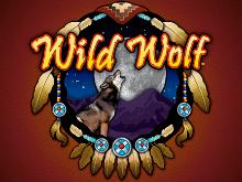 Wild Wolf – играйте в игровой автомат с призовыми спинами онлайн